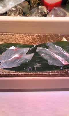 札幌『鮨龍』